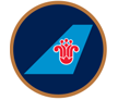 Logo of China Southern Airlines